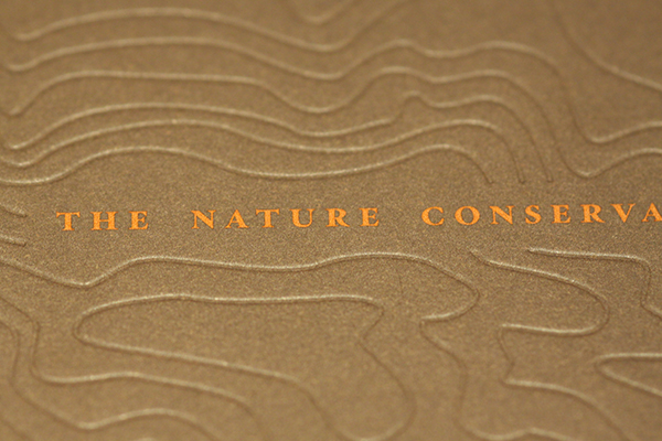 nature conservancy - kerning and mh